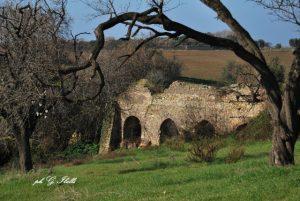 acquedotto molacce  (foto Ibelli)